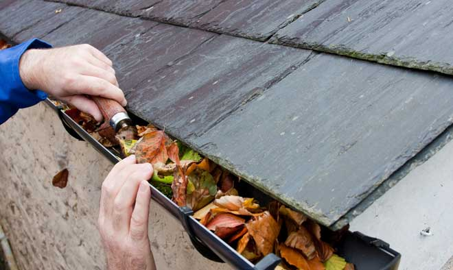 Cleaning a Gutter Clogged with Leaves