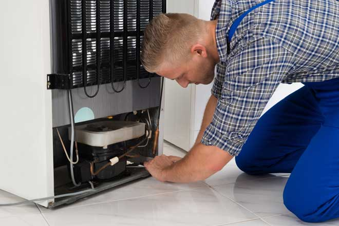 Technician Checking Refrigerator