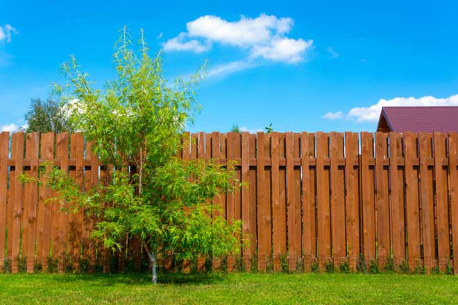 Different Types Of Privacy Fences For Your Home