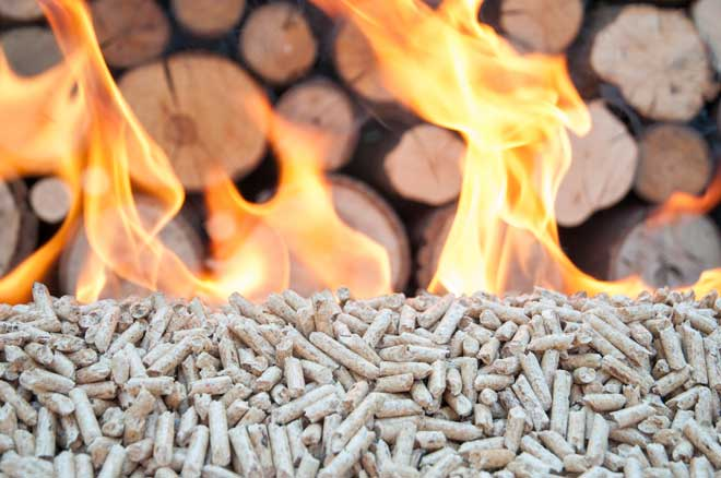 Pile of Wood Pellets