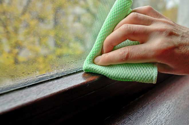 Cleaning a Window with Condensation and Mold on It