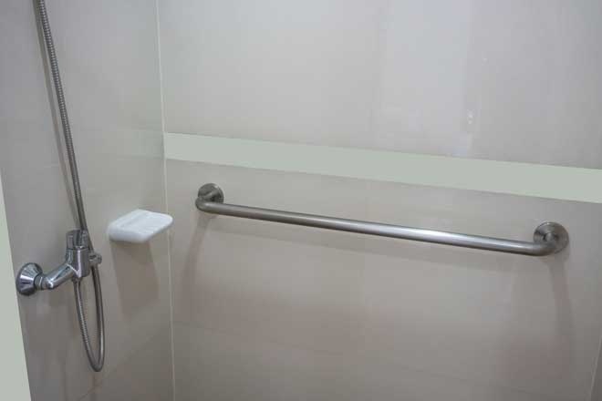 Handrail in Bathroom Shower