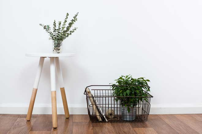 Simple Decorative Items Against a White Wall