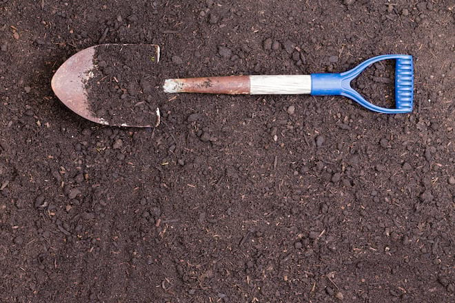 Shovel on Top of Soil