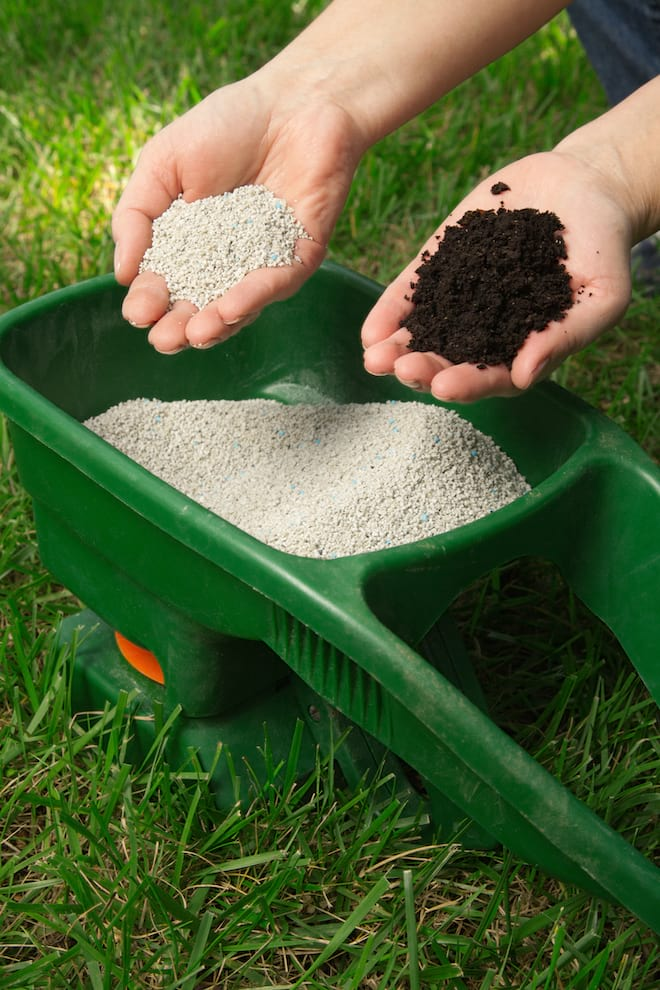 Hands Holding Lawn Fertilizer